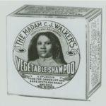 Vegetable shampoo