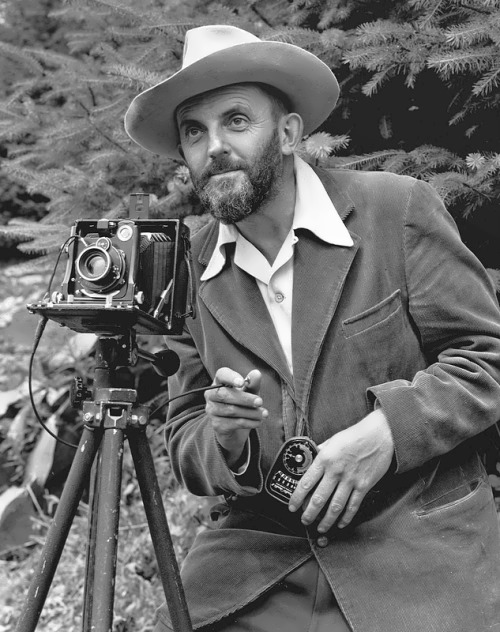 Ansel Adams – bright photographer