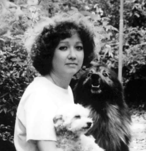 the life and works of susan eloise hinton Susan eloise hinton, known from her books as s e hinton, is an american writer contents[show] live and career susan eloise hinton was born on july 22, 1948 in tulsa, oklahoma.