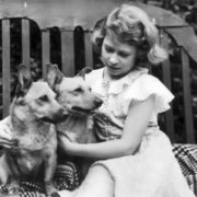 Elizabeth and her dogs