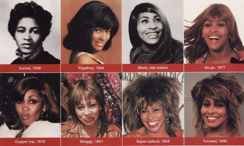 Tina Turner hairstyle