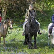 Elizabeth II and her grandchildren