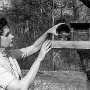 Famous writer Rachel Carson