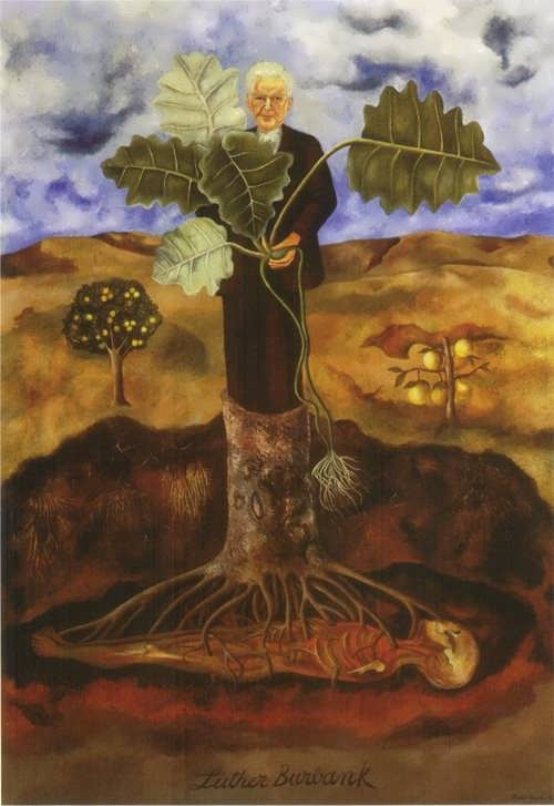 Portrait of Luther Burbank, 1931