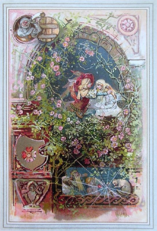 Rosehip. Illustration by Johnny Gruelle