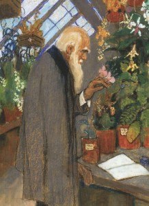 Ezuchevsky. Darwin in the greenhouse
