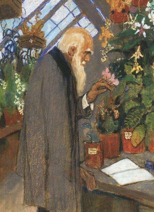 Ezuchevsky. Darwin in the greenhouse