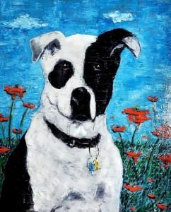 Pit Bull Terrier Mu