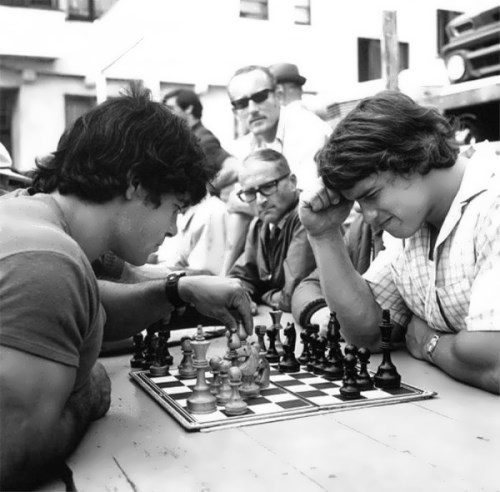 Schwarzenegger is playing chess