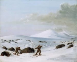 Indians Pursuing Buffalo on Snowshoes