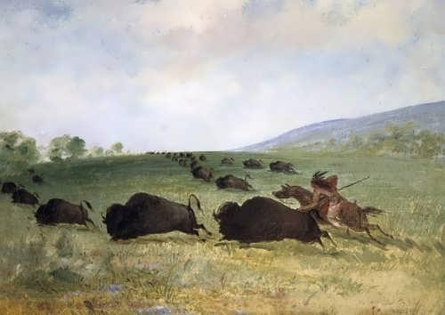 An Osage Indian Lancing a Buffalo