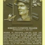 Hall of Fame baseball player