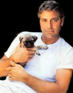Clooney – Hollywood actor