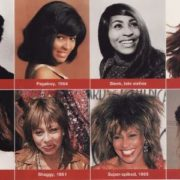 Tina Turner hairstyle