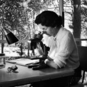 Alfred Eisenstaedt. Rachel is working with microscope at her home