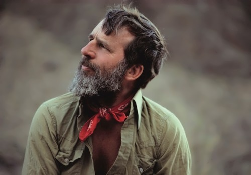 Edward Abbey - American environmentalist