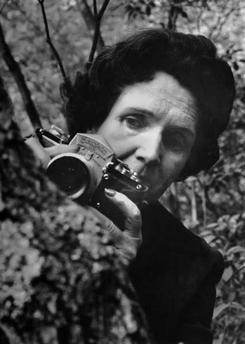 Rachel Carson with camera