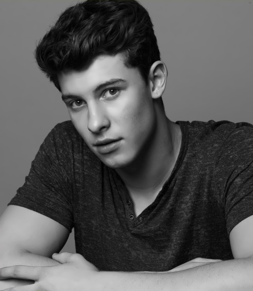 Shawn Mendes - Canadian pop singer