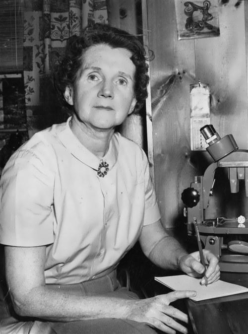Talented writer Rachel Carson