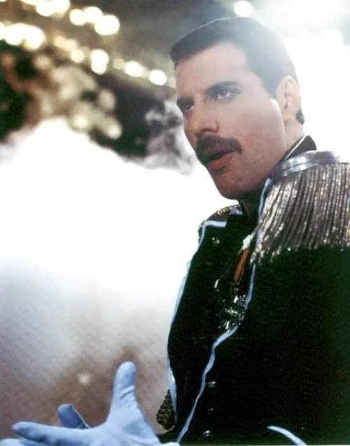 Amazing Freddie Mercury