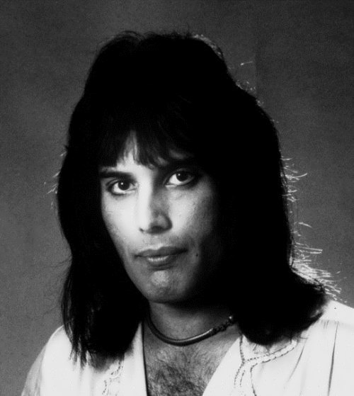 Charming Freddie Mercury