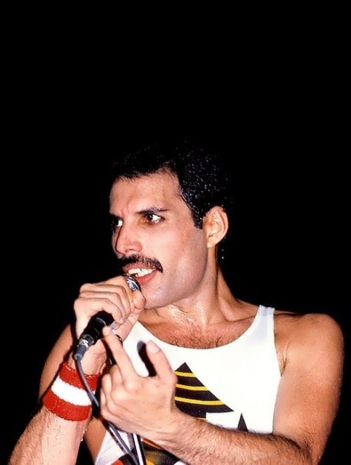 Renowned Freddie Mercury