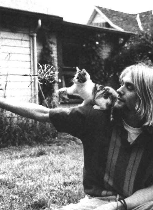 Cute Kurt Cobain