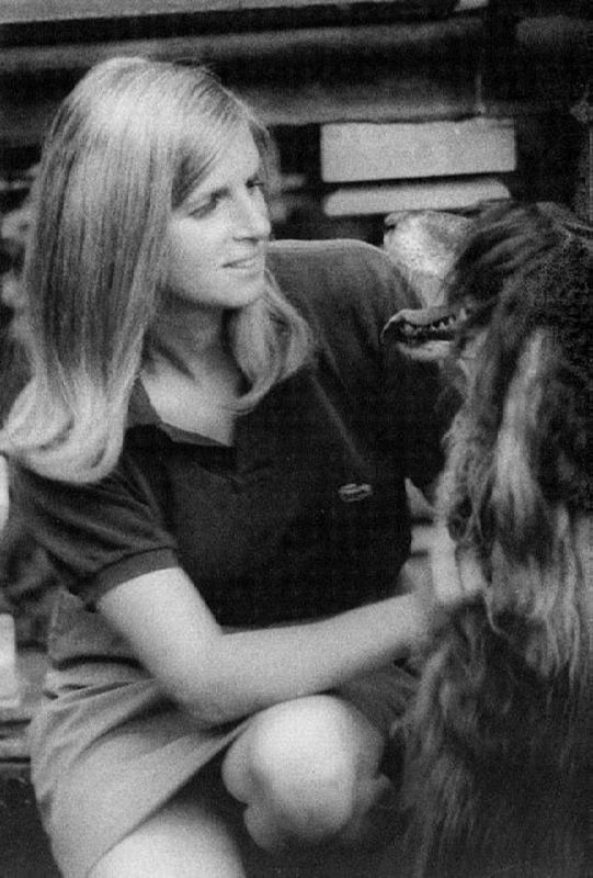 Respected Linda McCartney