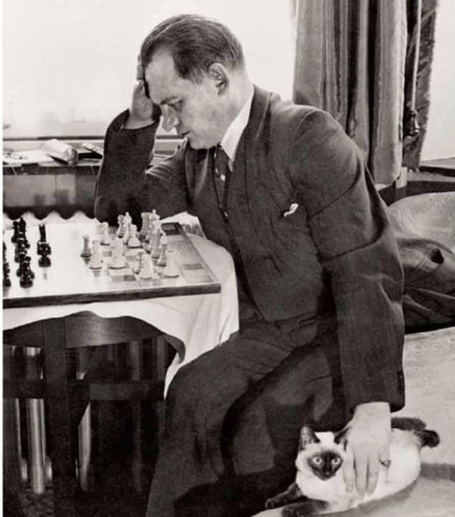 His favorite was a Siamese cat named Chess. Alekhine took him with him on all trips.